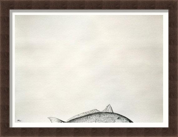 Original hand drawn graphite/pencil drawing of Redfish. 24 x 18 ...