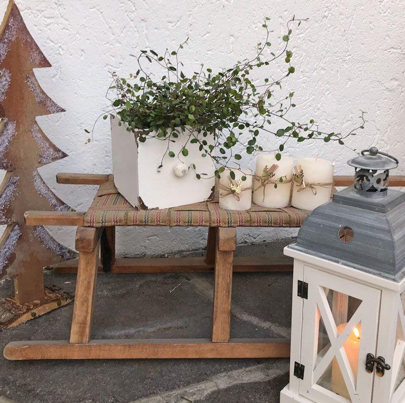 draussen dekorieren mit schlitten adventszeit schlitten weihnachten und deko weihnachten. Black Bedroom Furniture Sets. Home Design Ideas