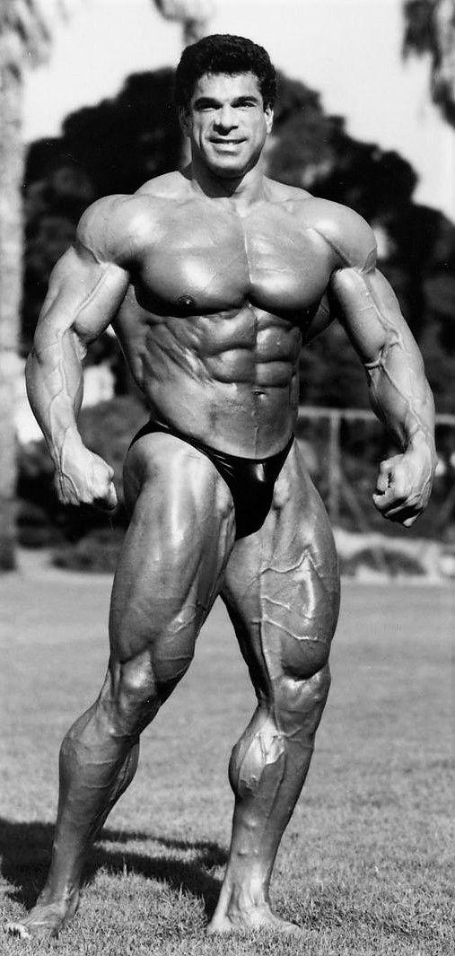 Lou Ferrigno Usa 9 November 1951 Height 6 Foot 5 195 Cm Het Menselijk Lichaam Menselijk Lichaam Lichaam