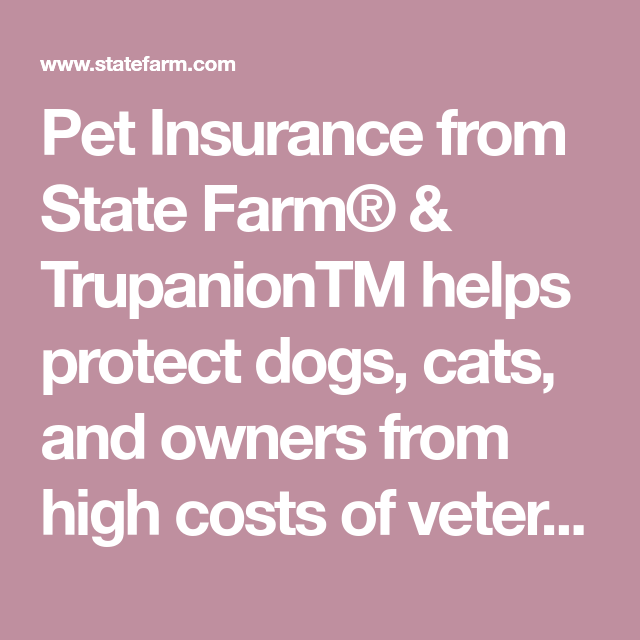 Pet Insurance From State Farm Trupaniontm Helps Protect Dogs Cats And Owners From High Costs Of Veterinary Care Get A Qu In 2020 Pet Insurance Pets Dog Insurance