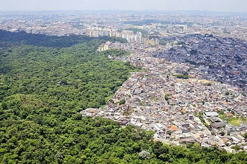City Of Manaus The Purpose Of Deforestation But Is It Worth It