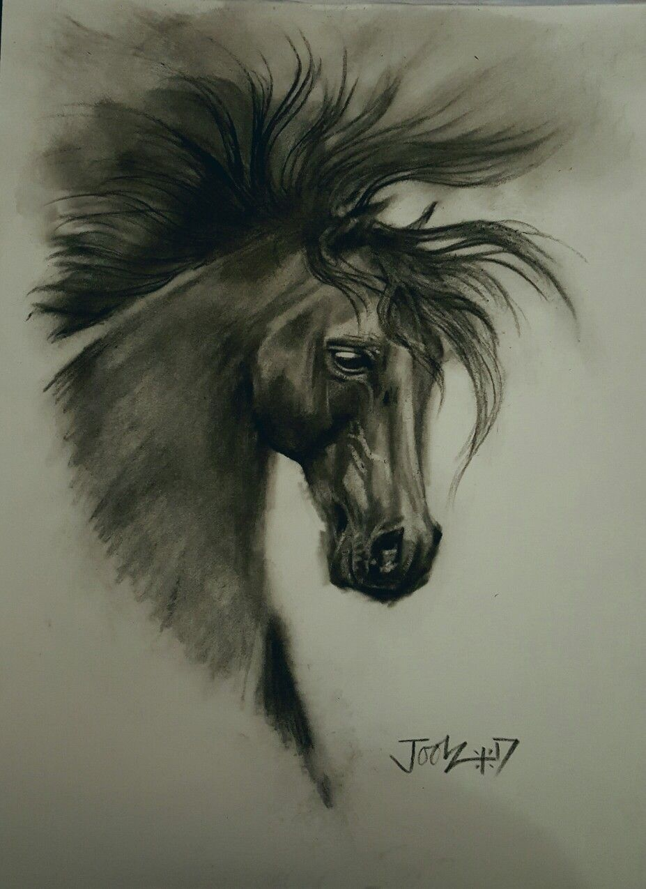 Dark Horse. Pastel pencil on Pastelmat. #horse #art