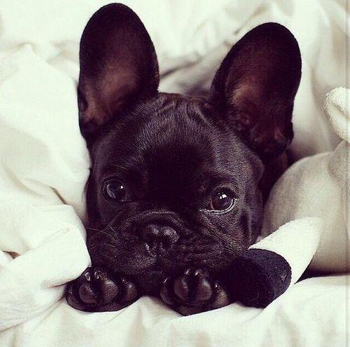 #cute 3
