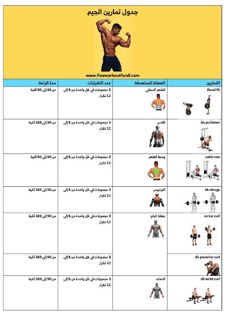 جدول تمارين كمال الاجسام للمبتدئين بالصور كامل Workout For Beginners Workout Beginners