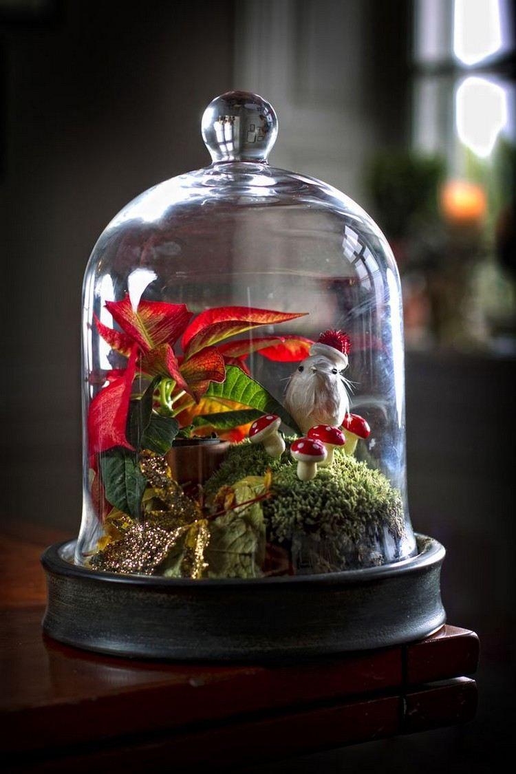 Waldlandschaft unter glasglocke mit moos und weihnachtsstern glasglocke weihnachten - Glasglocke dekorieren ...