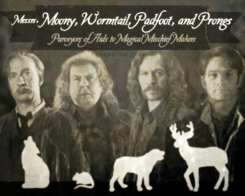 Remus Lupin, Peter Pettigrew, Sirius Black und James ...