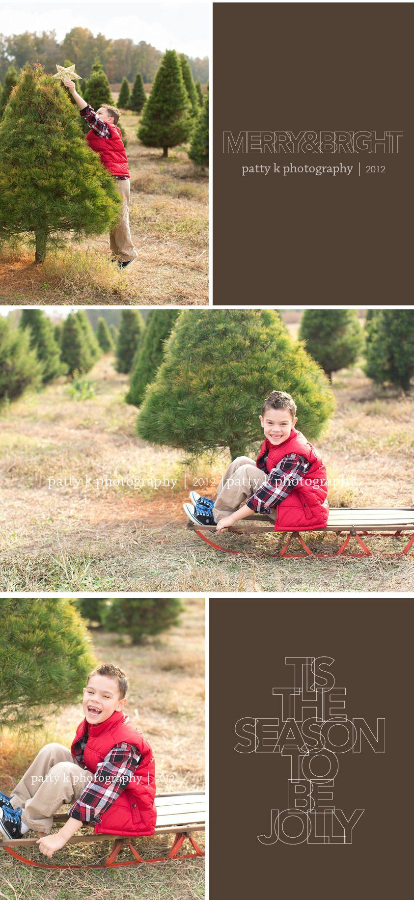 Tree Farm | Patty K Photography | 2012 | Holiday mini session, Photography mini sessions ...
