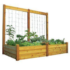 Gardening: outdoor bed