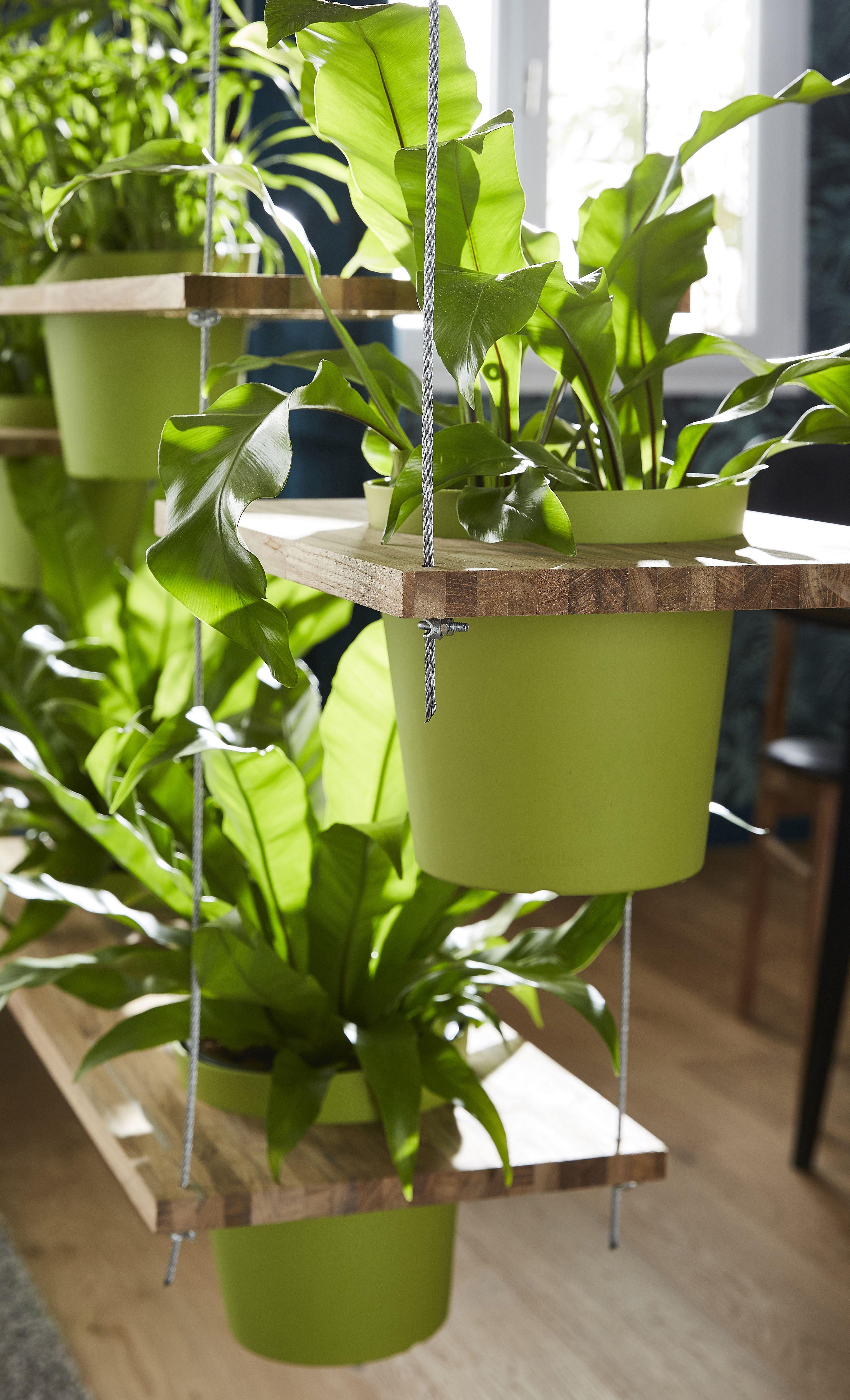 rideau vgtal entre le salon et la salle manger convier la nature chez soi peut