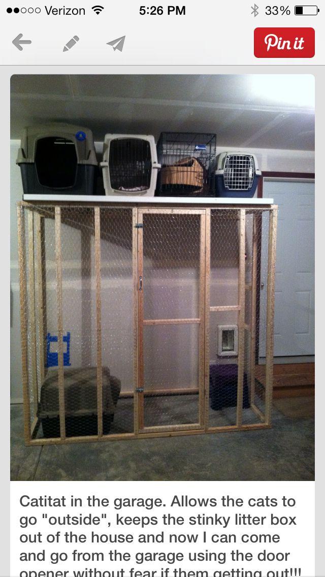 How To Build Litter Box In Garage Cat Litter Box Enclosure Litter Box Enclosure Cat Litter