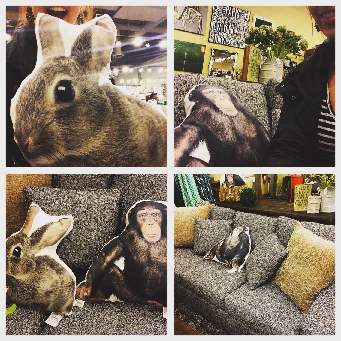 Monkey and rabbit Pillows