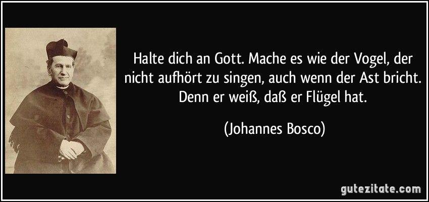 BFG by Roald Dahl Quotes | Halte dich an Gott. Mache es wie der Vogel, der nicht aufhört zu ...
