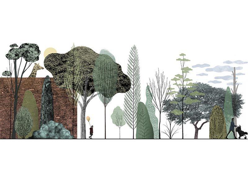 Inside Outside: Illustrations by Michael Kirkham