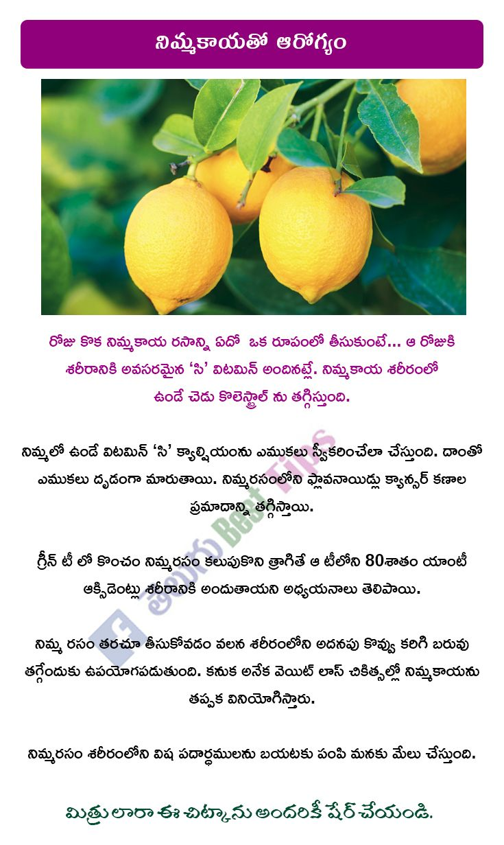 Best Benefits of Lemon in Health in Telugu - నిమ్మకాయతో ...