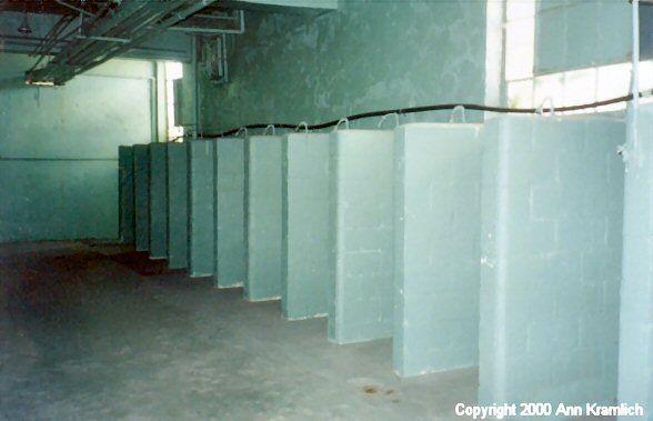 Super Prison Showers Level Design Assignment Shower Bathroom Download Free Architecture Designs Scobabritishbridgeorg