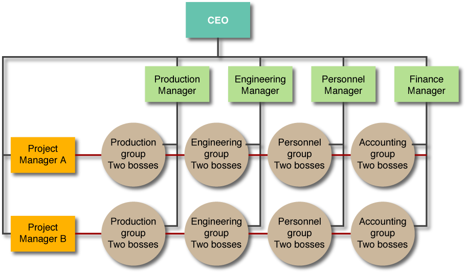 Sample  Matrix Organizational Structure By Kirkwood Management