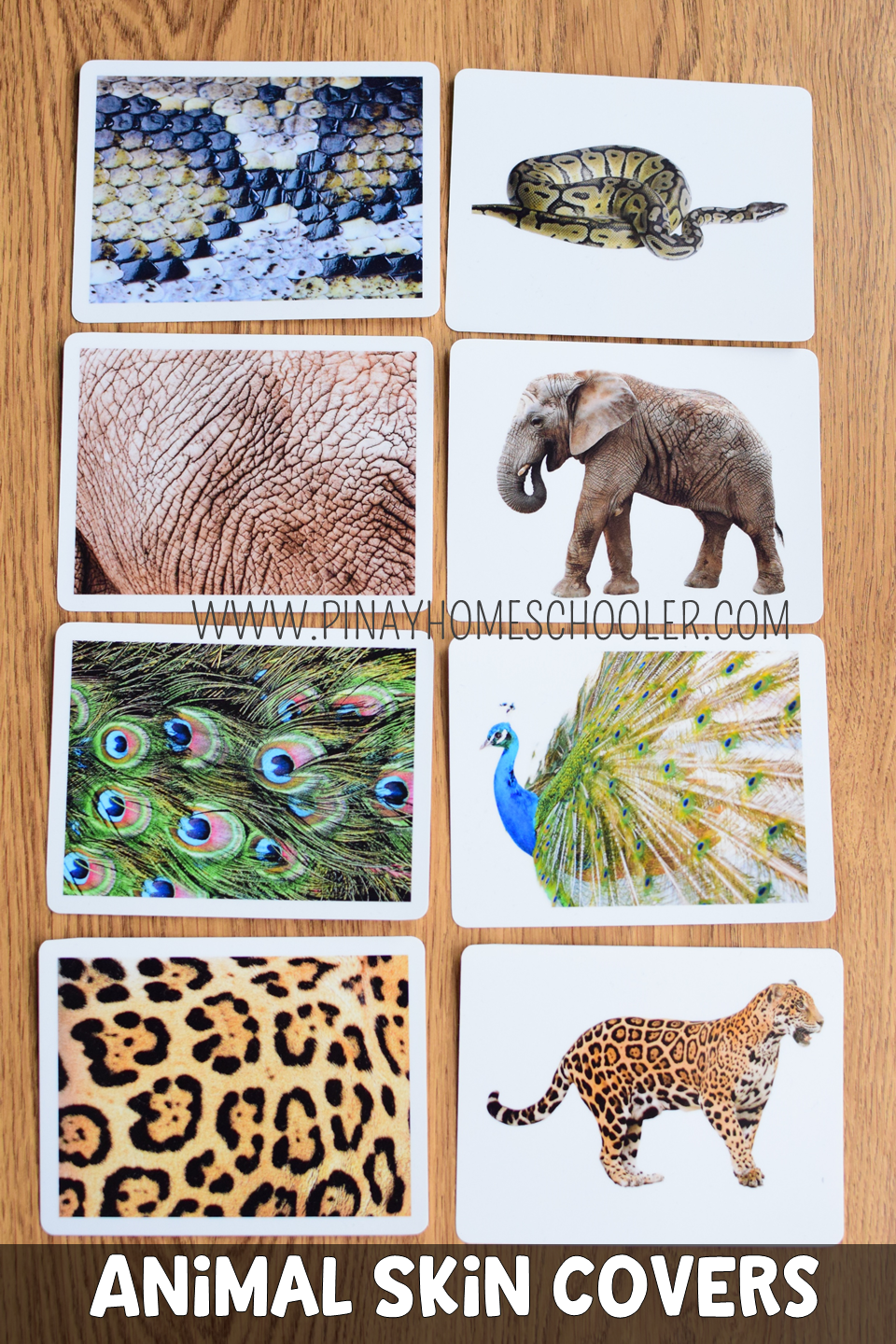This Is A Montessori Inspired Learning Material Used Mainly For Learning About The Different Skin Animal Covers K Animal Coverings Animal Skin Animal Habitats