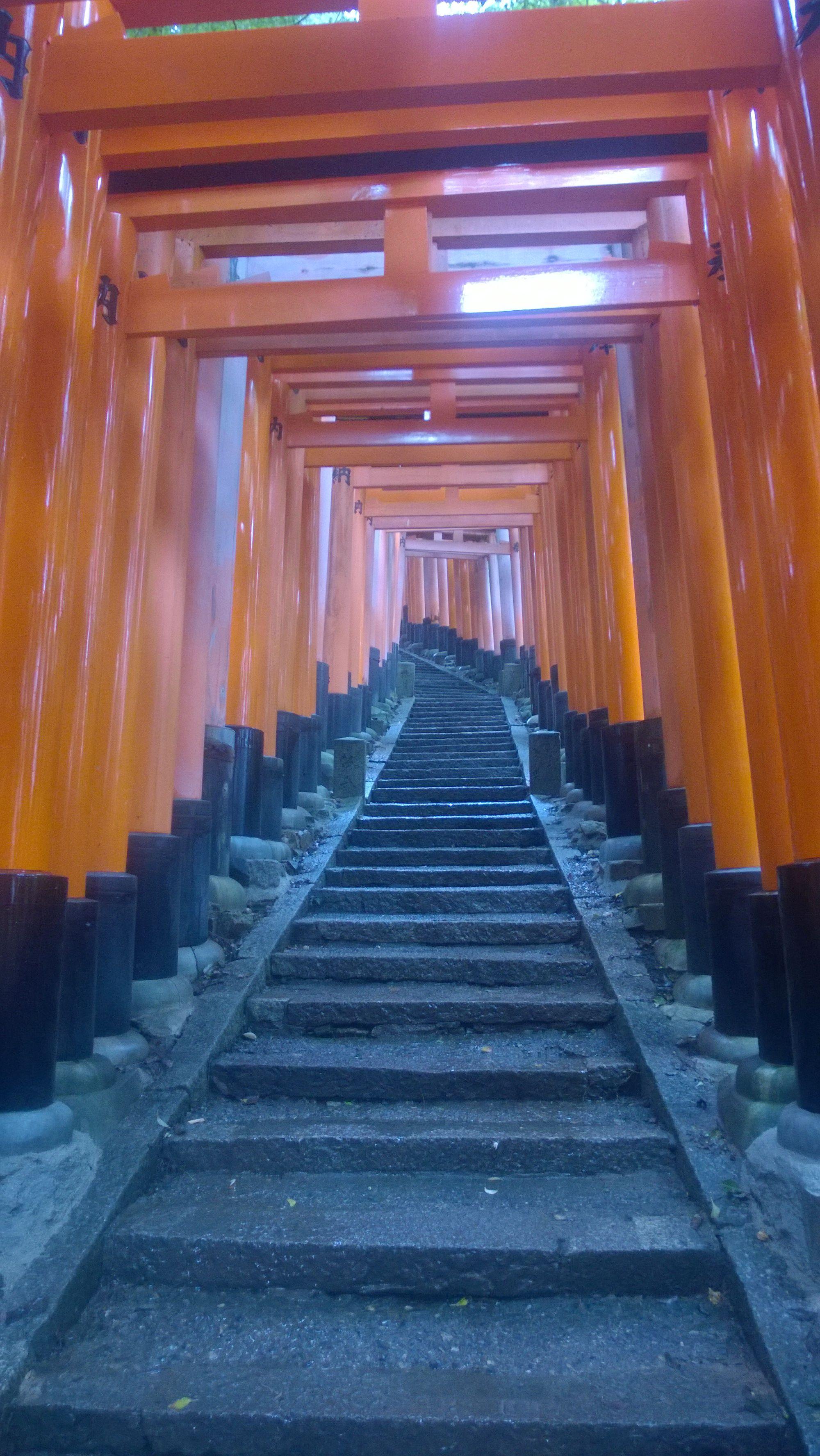 torii path, Fushimi Inari Taisha, Kyoto