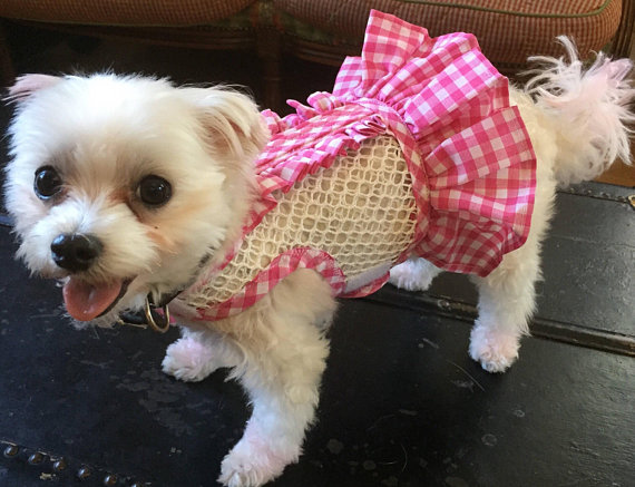 Breathable Mesh Ruffle Gingham Small Dog Harness Made In Usa Dog