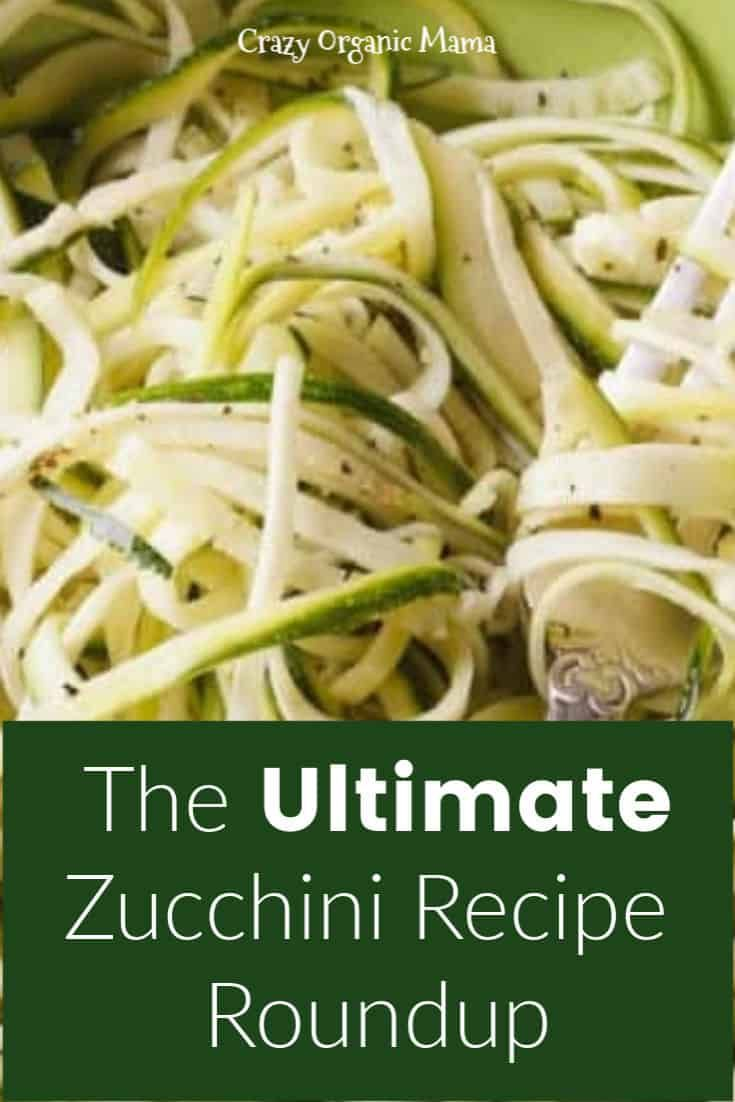 use up that garden zucchini  zucchini side dishes easy