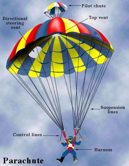 partes del paracaidas - Buscar con Google | Paracaidismo ( varias ...