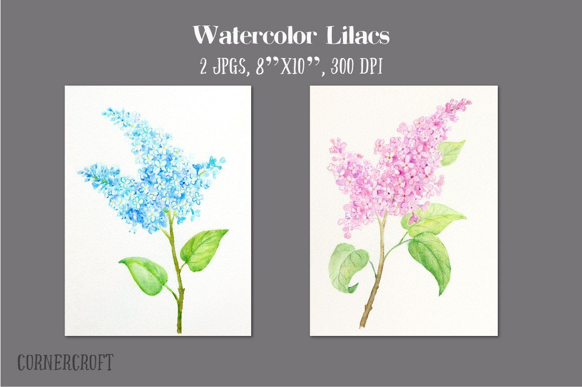 Watercolorlilacs Pink And Blue Printable For Wall Decor Greeting