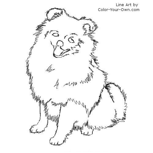 Pomeranian Line Art Puppy Coloring Pages Dog Coloring Page