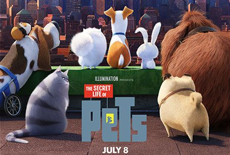 The Secret Life Of Pets In Theaters July 8 Secret Life Of Pets Pets Movie Secret Life