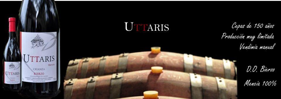 Vinos del bierzo | Uttaris