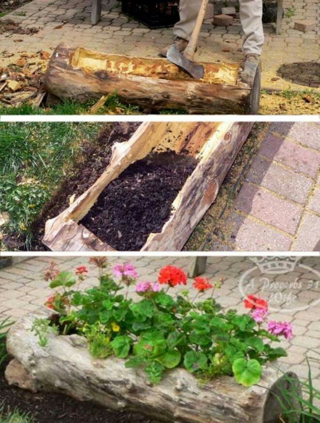 Genial How To Turn Tree Stumps And Logs Into Planters