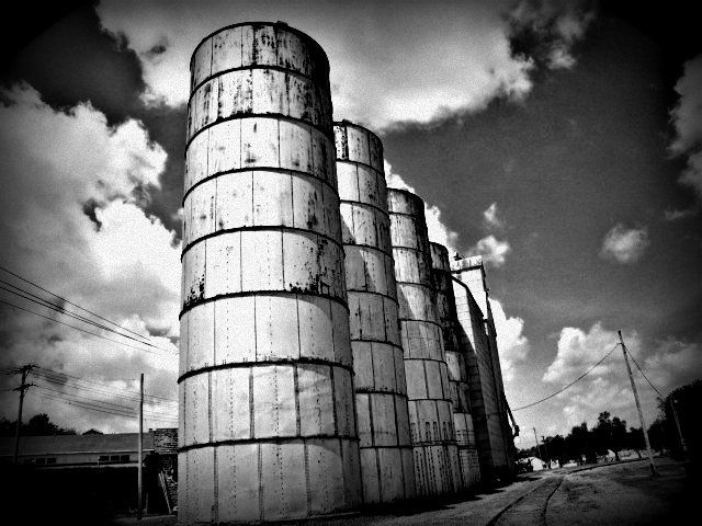 Several Grain Storage Bins In A Single File Leading To A Grain Elevator. Junction  City, Kansas