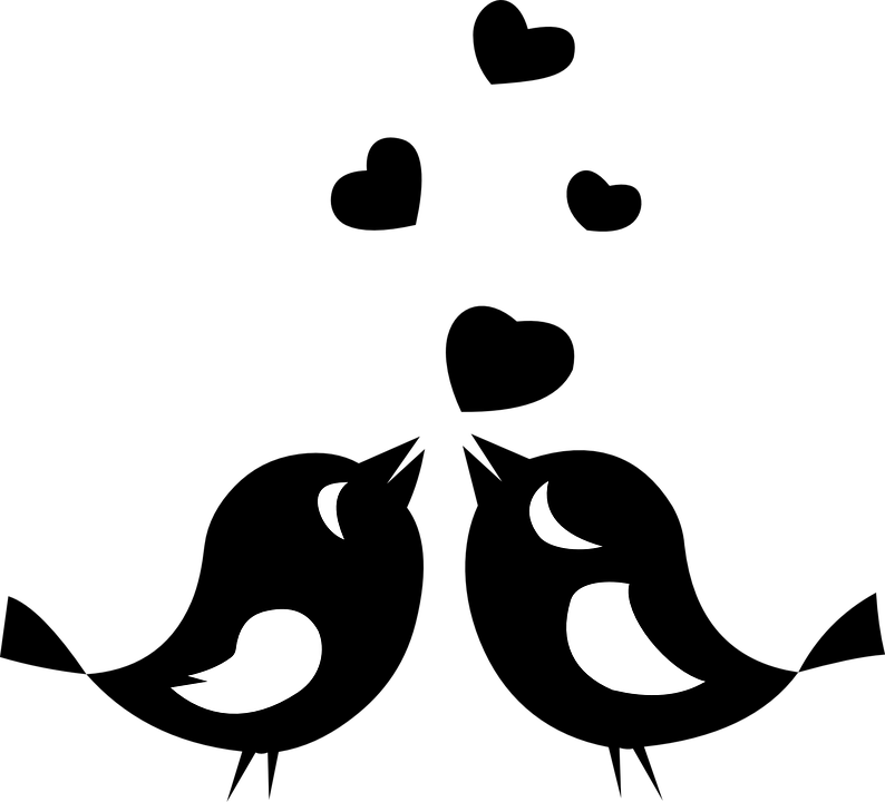 Gratis Obraz Na Pixabay Milosc Ptaki Zwierzeta Plywajace Bird Clipart Clipart Black And White Silhouette Clip Art