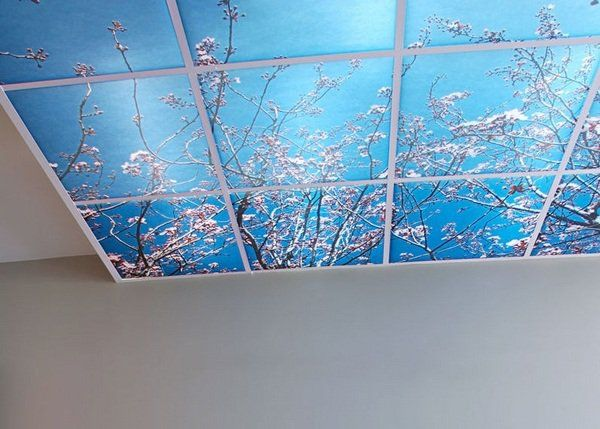 discover all the information about the product polyester suspended ceiling tile printed branches decodal and find where you can buy it - Decorative Ceiling Tiles