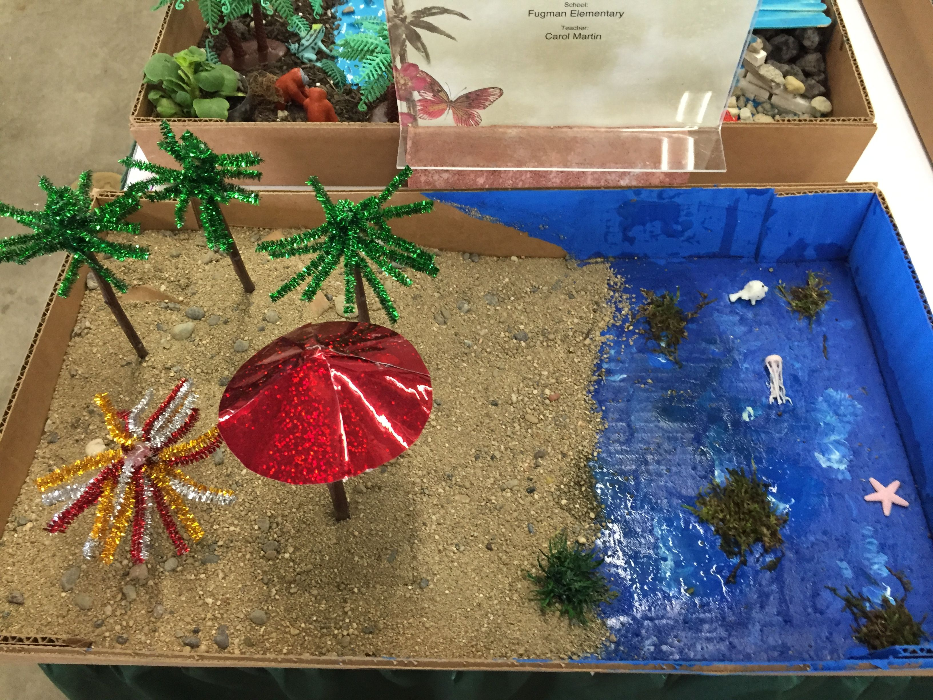 Love What The Students Created At The March 2016 Mini Landscape Competition  At The Fresno Home
