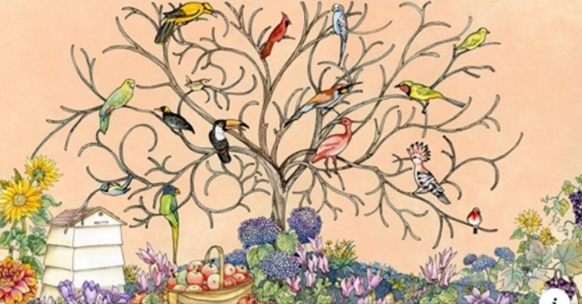 Jacquie Lawson Cards Avian Arbour Thinking Of You E Card In 2020