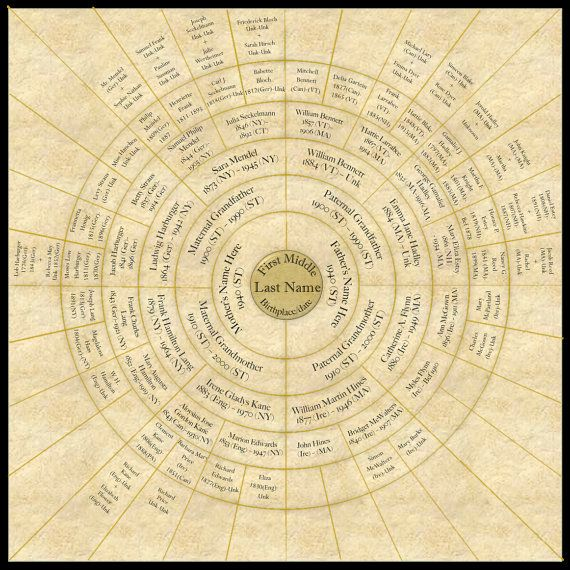 Circular Ringed Family Tree Up To 7 Generations Family Tree