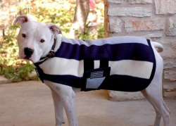 Dressabull.com, clothes and accessories for your pit bull. Choose Stubbydog as your rescue and 10% of proceeds are donated to support our programs! Yay!