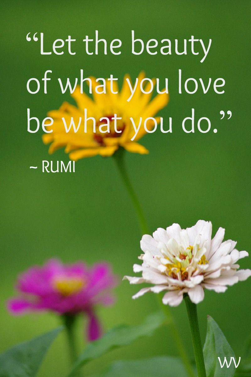 Let the beauty of what you love be what you do love beauty let the beauty of what you love be what you do love izmirmasajfo