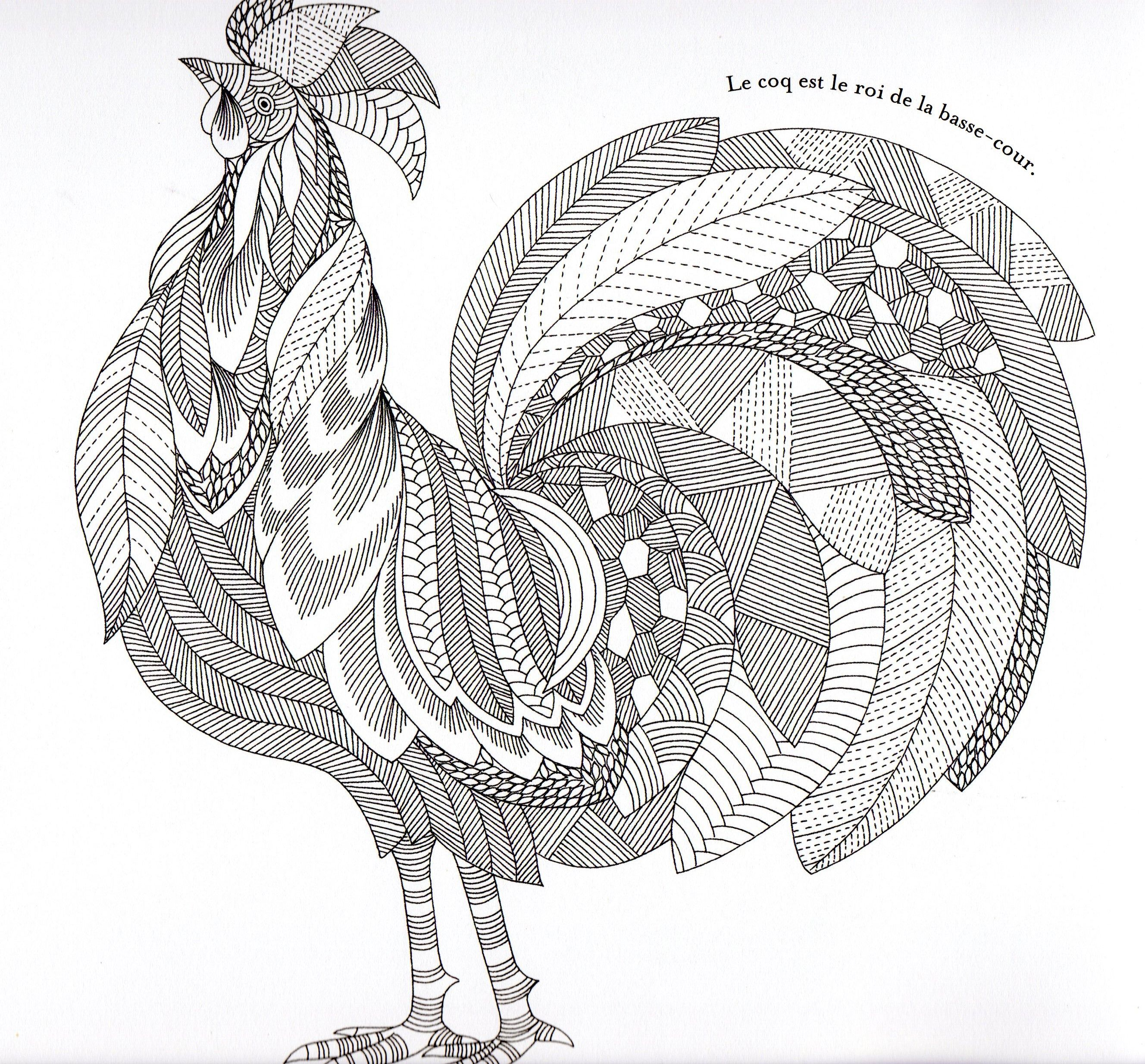 Animaux fantastiques Rooster Abstract