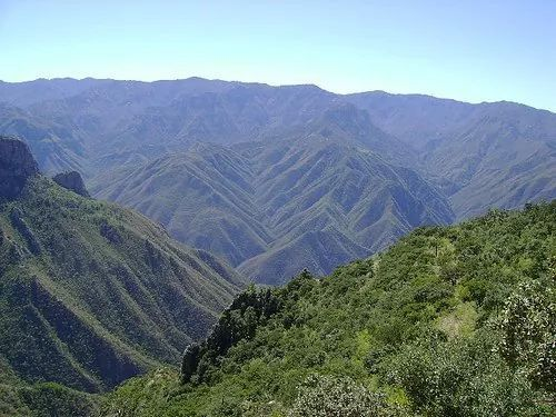 Sierra madre occidental( Durango.) | Sierra madre occidental