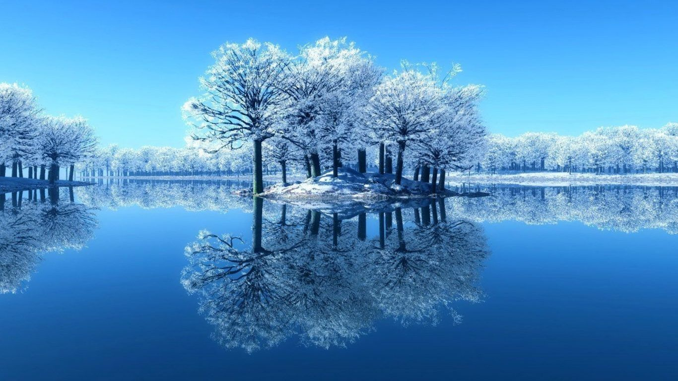 Winter Frosty Mirrored Sky Branches Clear Water Ice Cold