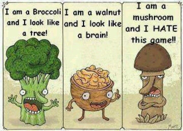 Fungi mushroom joke
