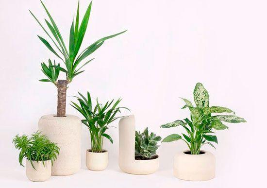 Macetas de diseño para plantas hechas a mano