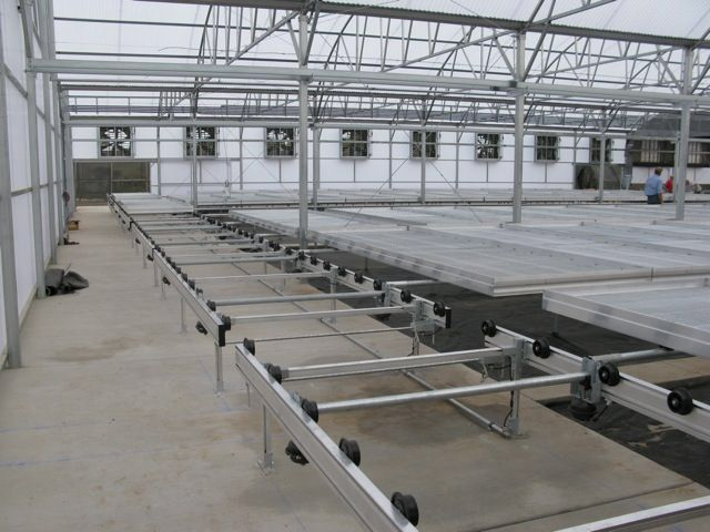 Rolling Greenhouse Benches