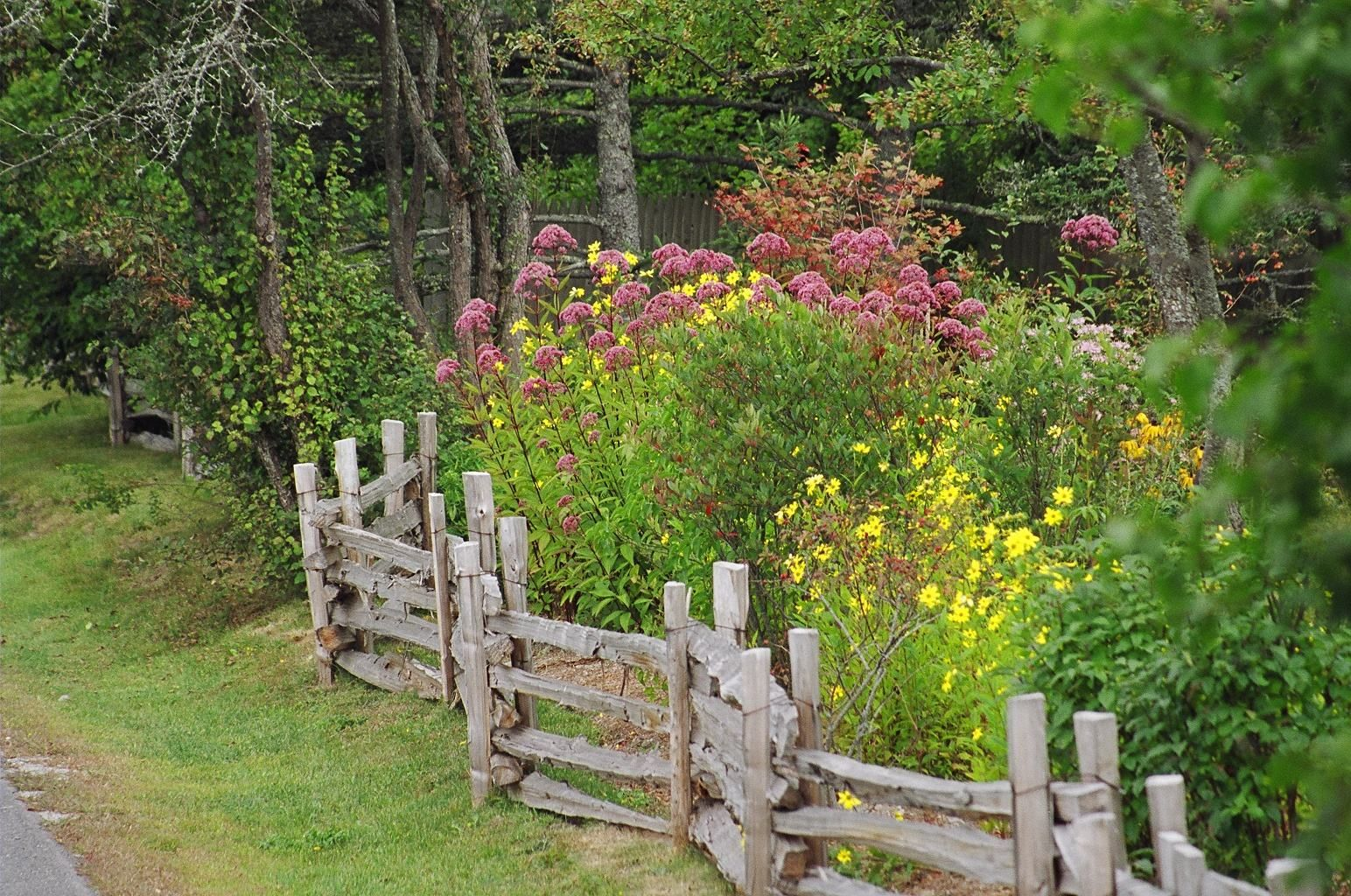 Love this fence and i want the flowers and trees that go with it too gardening pinterest - Rustic flower gardens ...