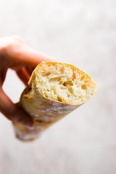 Now you can make crusty, artisan-like Homemade French ...