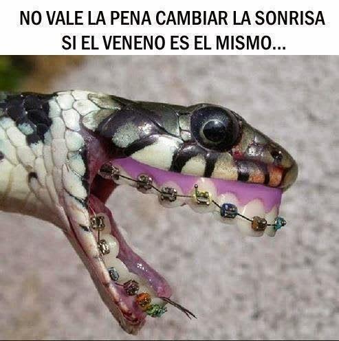 No vale la pena cambiar la sonrisa, si el veneno es el mismo ...