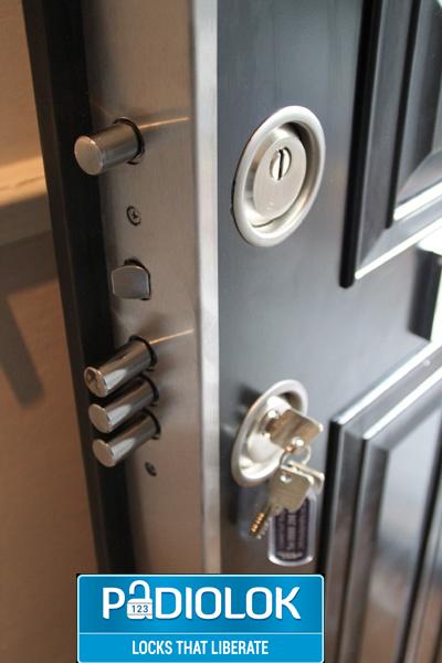Spygearco Dot Net Steel Security Doors Home Safety Home
