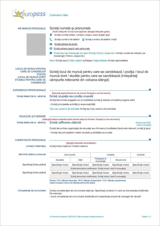 Curriculum Vitae Europeo Plantilla Word Para Rellenar Ingles In