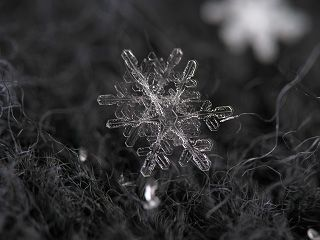 Snowflake Photo On Gray Wool Backdrop By Macro Setup With Canon Powershot A650is And Reversed Lens Helio Snowflake Photography Snowflake Photos Snowflakes Real